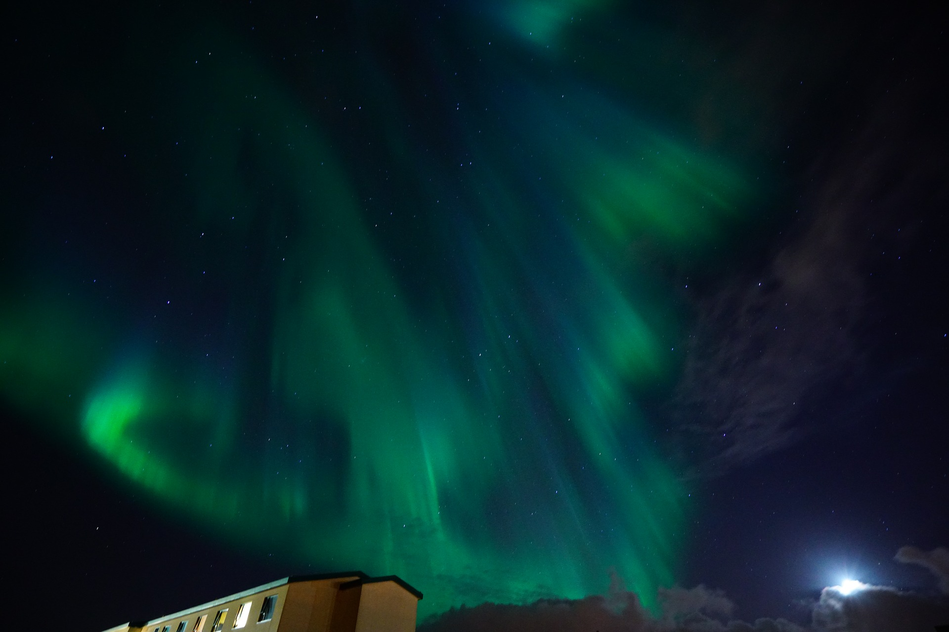 Auroras in Iceland, green and a drak sky