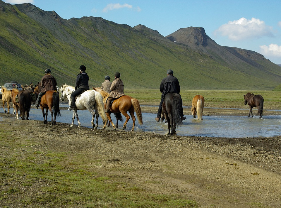 Guide to Horse riding Iceland